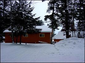 Big Woods in Winter